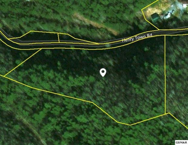 Lot 42 Sawmill Branch Dr, Sevierville, TN 37862 (#210304) :: Billy Houston Group