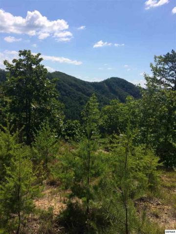 Lot #6 Eagles Point Way, Pigeon Forge, TN 37862 (#210405) :: Billy Houston Group