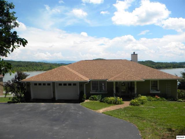 1315 Hickory Ln, Dandridge, TN 37725 (#210455) :: Colonial Real Estate