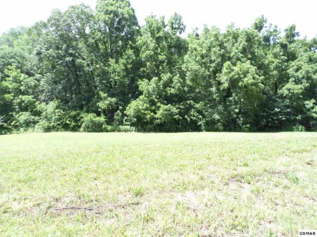 Lot 20 Meadowcrest Lane, Dandridge, TN 37725 (#210599) :: Billy Houston Group