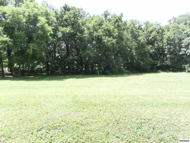 Lot 21 Meadowcrest Lane, Dandridge, TN 37725 (#210600) :: Billy Houston Group