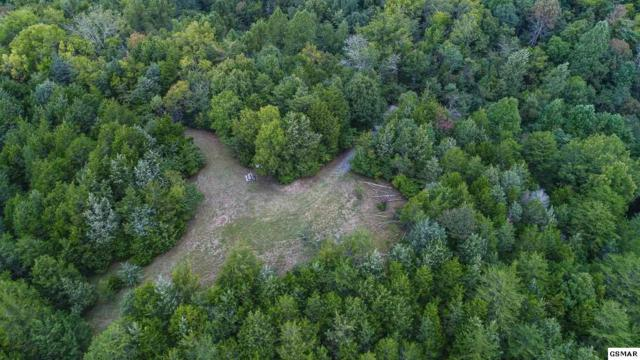 2069 Cody View Way Lot 10, Sevierville, TN 37876 (#210614) :: Billy Houston Group