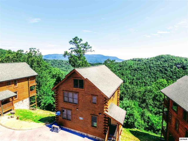 2835 White Oak Ridge Lane High Falutin', Sevierville, TN 37862 (#210821) :: Colonial Real Estate