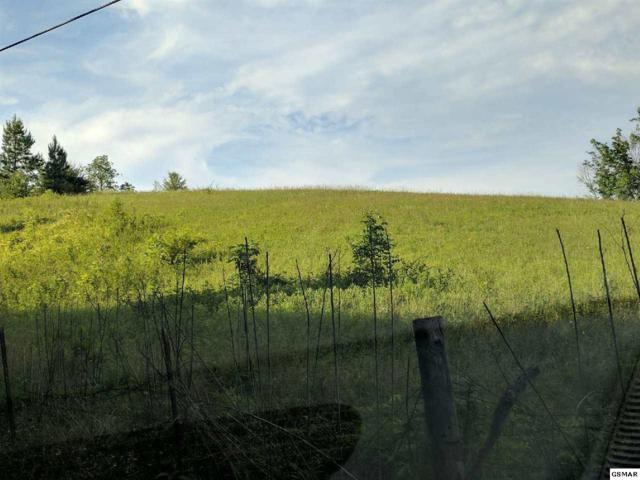 Lot 2a2b Mccarter Hollow Rd, Sevierville, TN 37862 (#211057) :: Four Seasons Realty, Inc