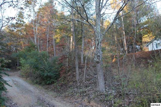 Lot 1 Cedar Rd, Pigeon Forge, TN 37738 (#211074) :: Billy Houston Group