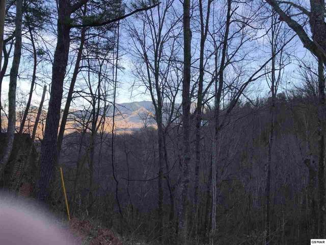 Heiden Dr. Lots 5 & 6, Gatlinburg, TN 37738 (#211267) :: The Terrell Team