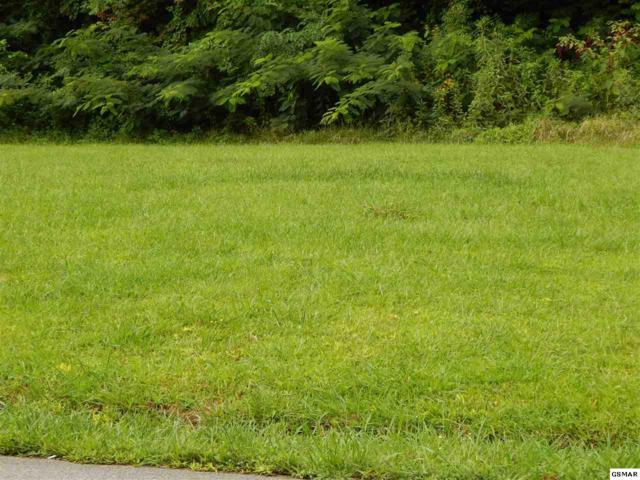 Lot 2 Willa View Dr, Pigeon Forge, TN 37863 (#211630) :: Colonial Real Estate