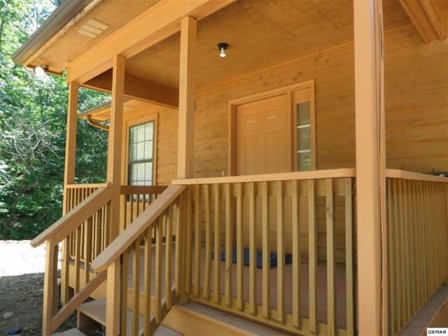 925 Magnolia Pl, Sevierville, TN 37876 (#212113) :: Colonial Real Estate