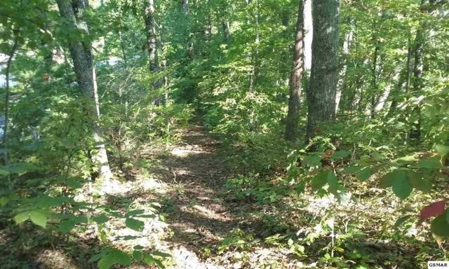 LOT 9A,B,C Monte Wood Circle, Pigeon Forge, TN 37863 (#212245) :: Billy Houston Group