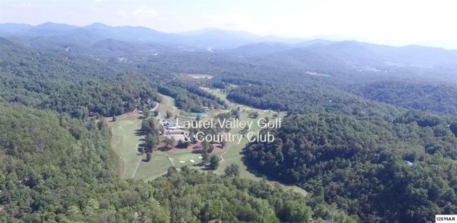 Lot 2 & 13 Bears Den Rd, Townsend, TN 37882 (#212577) :: The Terrell Team