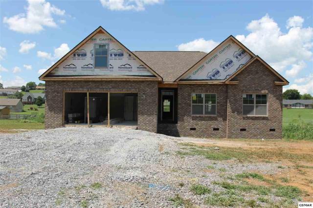 Lot 13 Bryson Ct, Sevierville, TN 37876 (#212736) :: Billy Houston Group