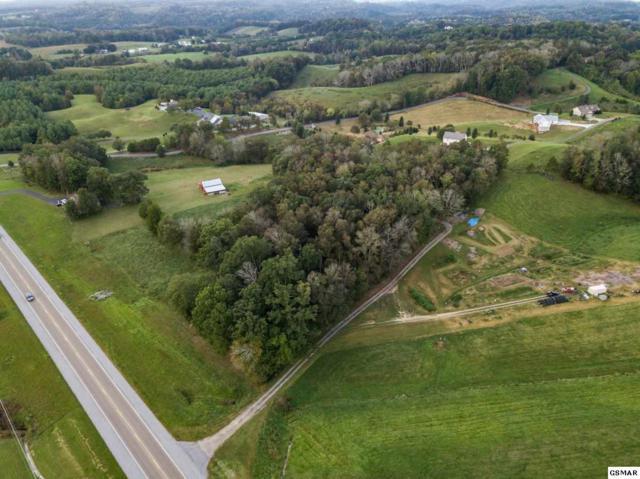 Lot 3 Newport, Sevierville, TN 37876 (#212738) :: Prime Mountain Properties