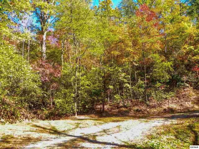 Lot# 7 Claude Shields Way, Sevierville, TN 37876 (#212794) :: Billy Houston Group