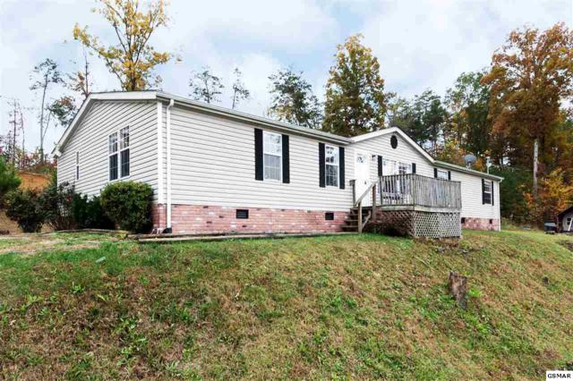 1649 Dinkens, Seymour, TN 37865 (#212968) :: Colonial Real Estate