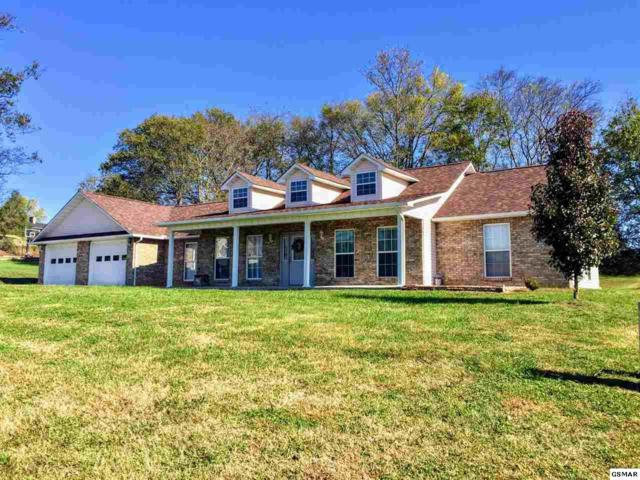 1276 Blake Lea Belle Meadows, Sevierville, TN 37862 (#212978) :: Colonial Real Estate