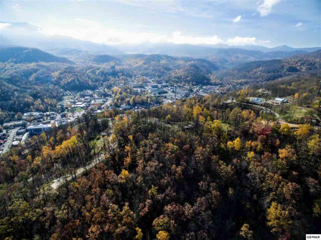 Fairview Rd Ivy Street, Gatlinburg, TN 37738 (#213067) :: Four Seasons Realty, Inc