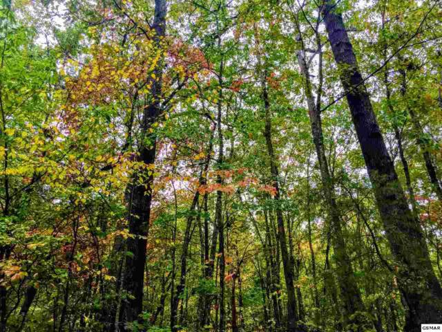 Lot 12 Mountain Drive Lot 12 Mountain, Gatlinburg, TN 37738 (#213069) :: Billy Houston Group
