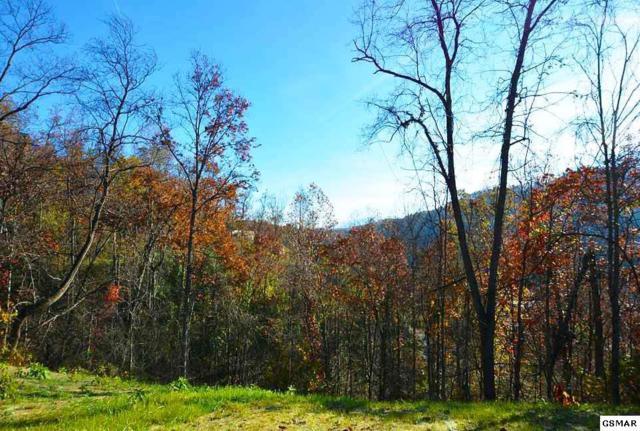335 Pinnacle Drive, Gatlinburg, TN 37738 (#213154) :: Billy Houston Group