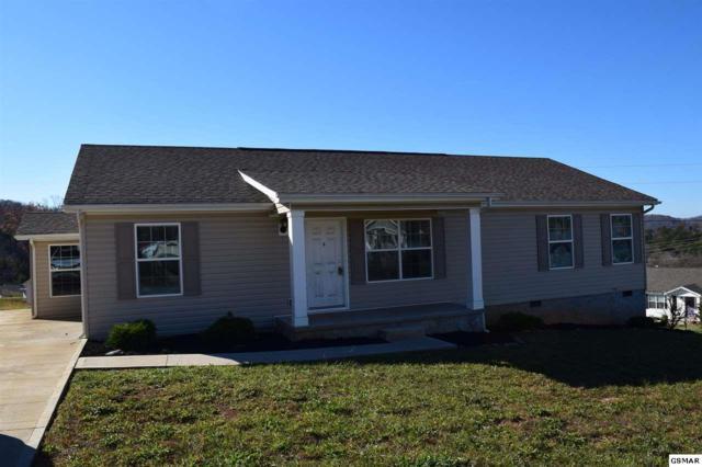1117 Case View Rd, Dandridge, TN 37725 (#213288) :: Colonial Real Estate