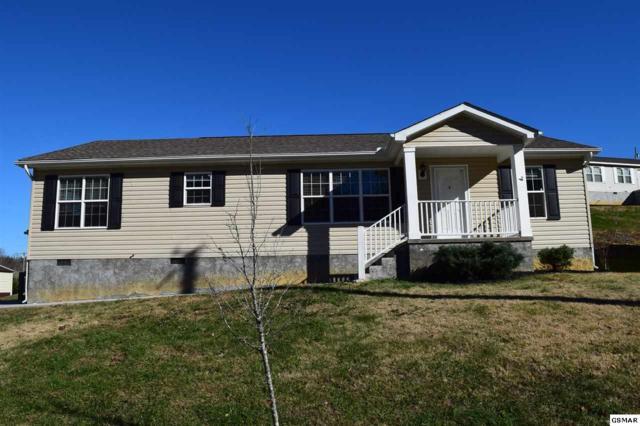 1191 Case View Rd, Dandridge, TN 37725 (#213291) :: Colonial Real Estate