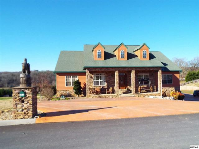 2869 Luther Catlett Circle, Sevierville, TN 37876 (#213463) :: The Terrell Team