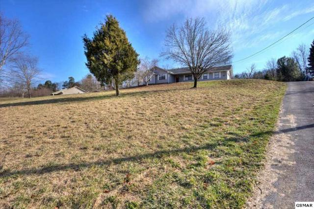 1007 Bradley, Kodak, TN 37764 (#213586) :: SMOKY's Real Estate LLC