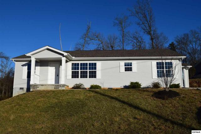 1114 Case View Rd, Dandridge, TN 37725 (#213789) :: Colonial Real Estate