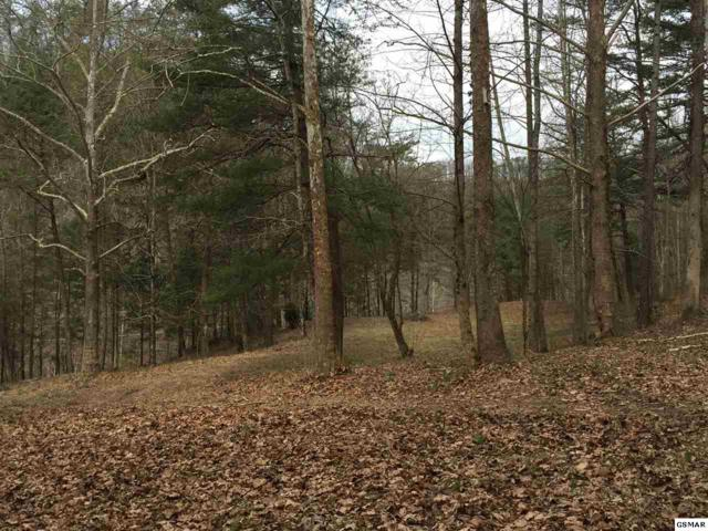 Lot 1 Trace Way, Sevierville, TN 37862 (#213984) :: Four Seasons Realty, Inc
