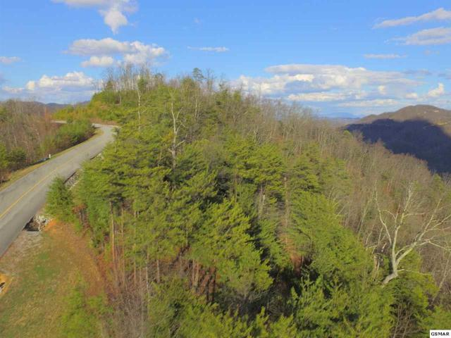 Lot 48W Long Rifle Rd, Walland, TN 37886 (#214260) :: Billy Houston Group