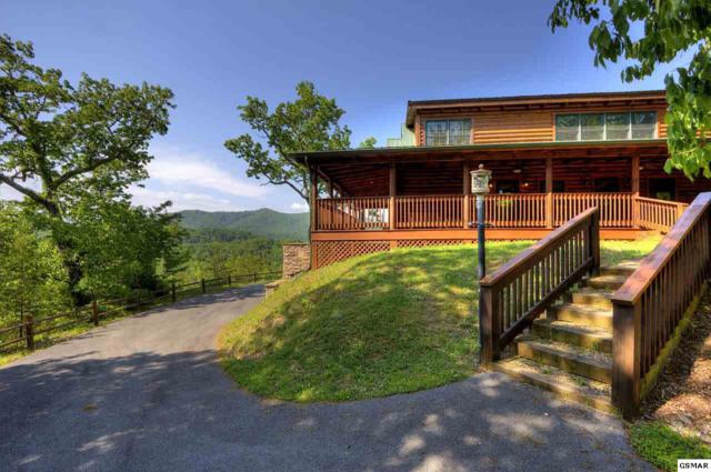 4305 Black Powder Lane, Sevierville, TN 37862 (#214392) :: Billy Houston Group