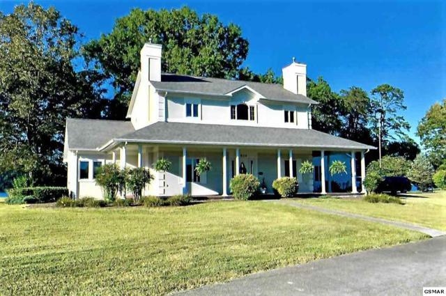 824 Tucker Place Way, Dandridge, TN 37725 (#214421) :: Colonial Real Estate
