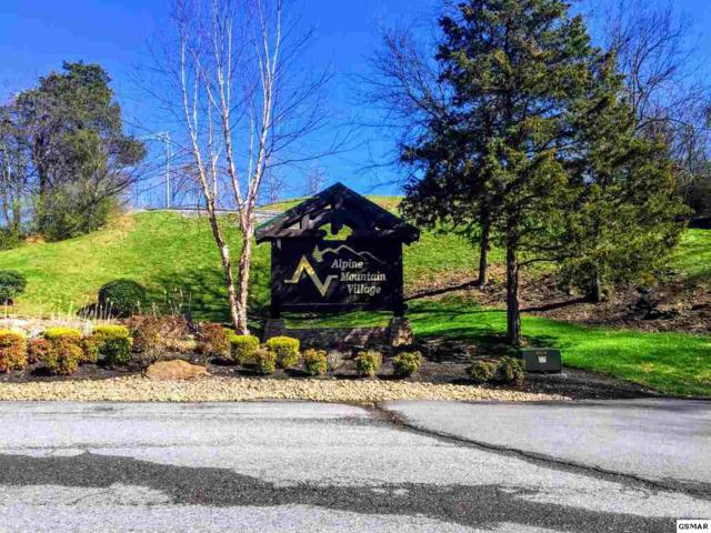 Lot 123 Alpine Mountain Way 1 Block Fron Th, Pigeon Forge, TN 37863 (#214477) :: Colonial Real Estate