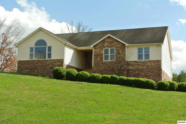 519 Downing Ln, Sevierville, TN 37876 (#214550) :: The Terrell Team