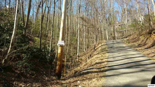 LOT 9 Big Oak, Gatlinburg, TN  (#214631) :: The Terrell Team