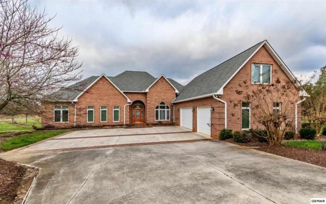 137 Lake Breeze Drive, Dandridge, TN 37725 (#214722) :: Colonial Real Estate