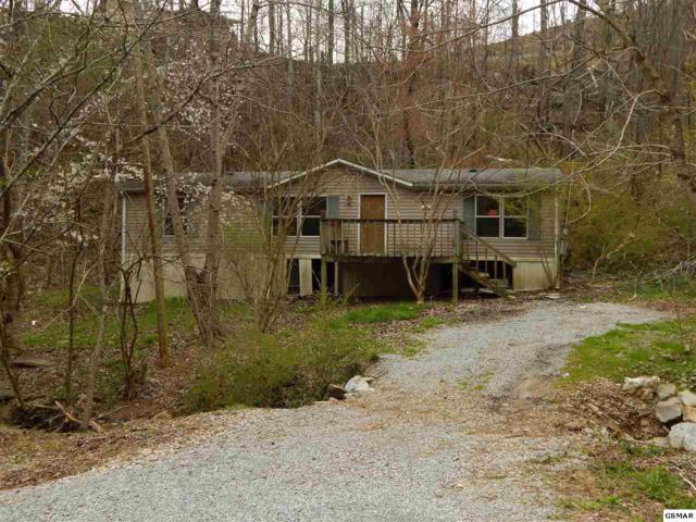 275 Beech Branch Rd., Gatlinburg, TN 37738 (#214797) :: Colonial Real Estate