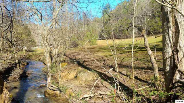 PO 14 Rocky Flats Road, Cosby, TN 37722 (#214906) :: Four Seasons Realty, Inc