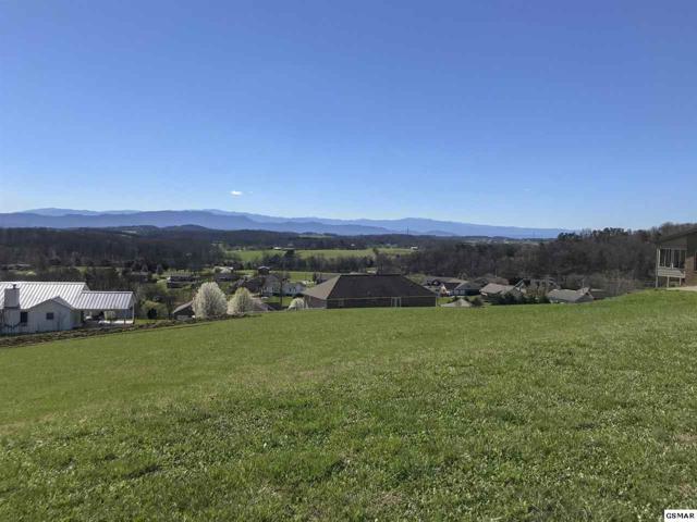 Lot 77 Scenic View Drive, Talbott, TN 37877 (#215043) :: Billy Houston Group