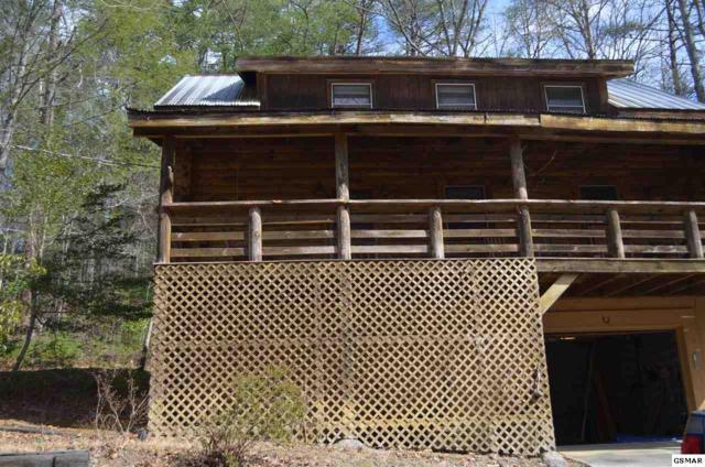 1224 Chavis Road, Cosby, TN 37722 (#215067) :: Colonial Real Estate