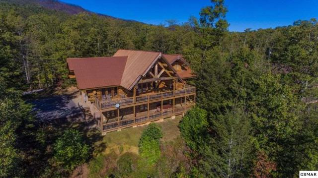 427 Coyote Rd, Gatlinburg, TN 37738 (#215130) :: The Terrell Team