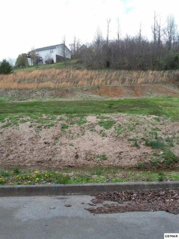 Lot 12 Turkey Hollow Lane, Sevierville, TN 37876 (#215175) :: Billy Houston Group