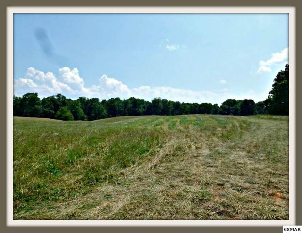 Lot 9 Burchfield Rd, Dandridge, TN 37725 (#215236) :: Billy Houston Group