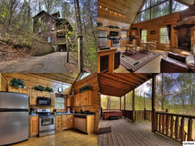 1614 Lamons Loop Endless Joy, Sevierville, TN 37876 (#215254) :: Four Seasons Realty, Inc