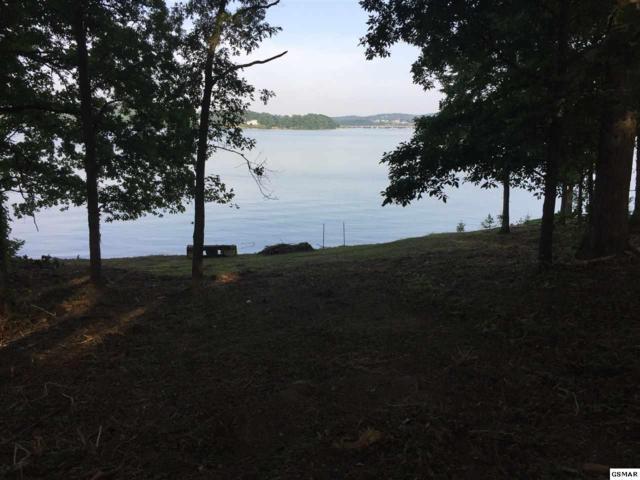 Lot 14 Lake Ridge Drive, Dandridge, TN 37725 (#215325) :: Billy Houston Group