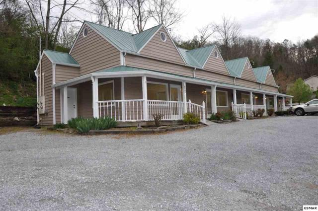 204 Glades Rd, Gatlinburg, TN 37738 (#215330) :: Colonial Real Estate