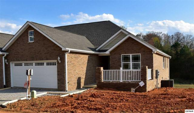 1919 Canyon Rd, Sevierville, TN 37862 (#215377) :: Four Seasons Realty, Inc