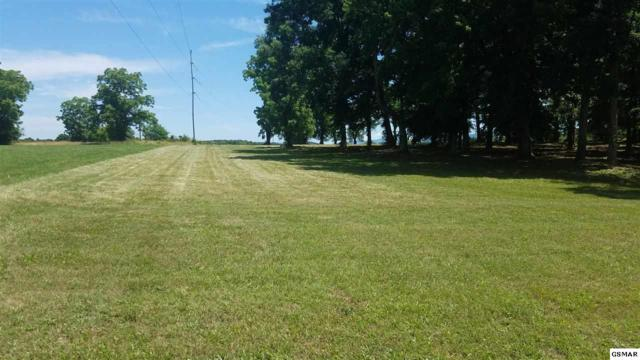 Lot 116 Wild Pear Trail, Dandridge, TN 37725 (#215443) :: Four Seasons Realty, Inc