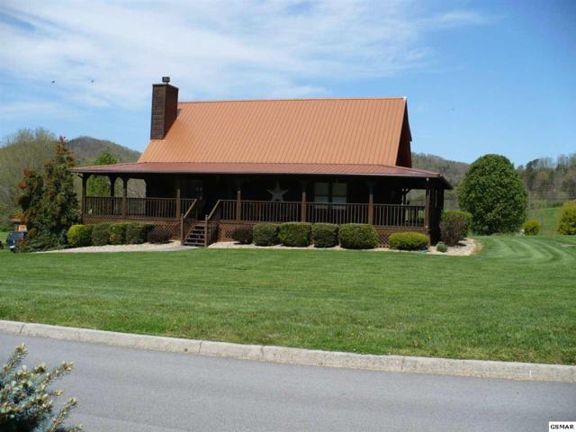 3509 Autumn Woods Lane, Sevierville, TN 37862 (#215557) :: Colonial Real Estate