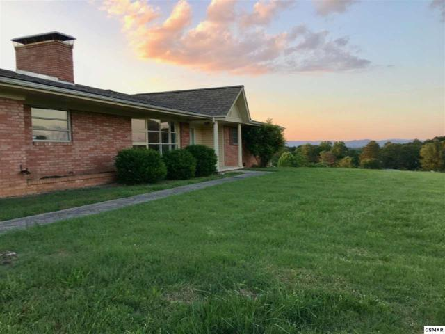 421 Callaway Dr, Morristown, TN 37814 (#215643) :: Billy Houston Group