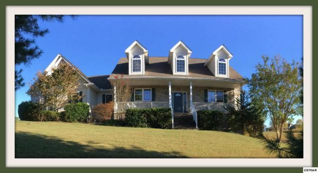 3549 Mountain View Ln., White Pine, TN 37890 (#215656) :: Billy Houston Group